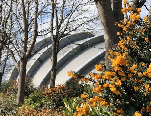 Master Gardens of Scotland